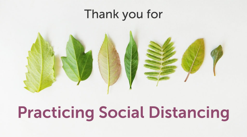 Social Distancing Leaves