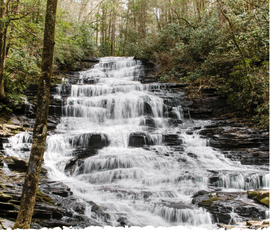 Waterfall Profile Image - Compressed
